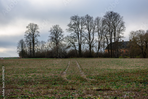 Staande foto Bleke violet empty tractor road in the countryside in autumn. gravel surface