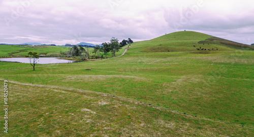 Fotobehang Purper Farming field in Tasmania, Australia