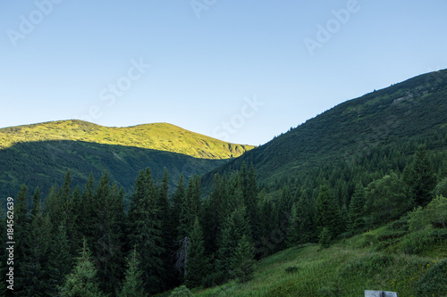Staande foto Blauwe hemel Landscape of the mountains and mountain natural green forest. Carpathian mountains. Europe. Ukraine.