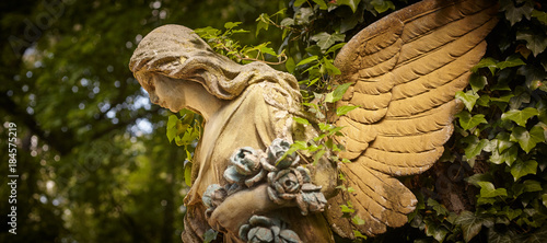 A fragment of ancient sculpture angel in a golden glow in the old cemetery. - 184575219