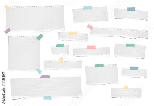 White ripped blank, lined note, notebook paper strips for text or message stuck with colorful adhesive, sticky tape on white background.