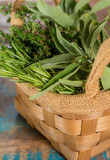 Fresh italian kitchen herbs - thyme, rosemary, sage, parsley - 184627465