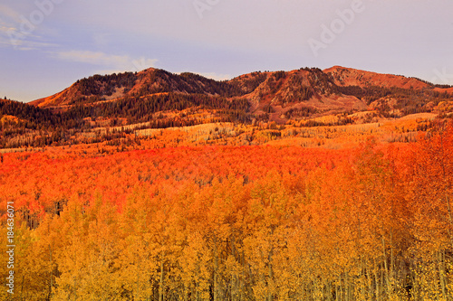 Fotobehang Oranje eclat Wasatch autumn scene, Utah.