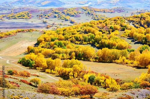 Keuken foto achterwand Oranje The autumn steppe landscape.