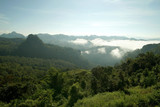 misty mountain hills in the morning - 184639812
