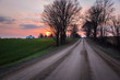 Winter Sunset over a Country Road Lined with Leafless Trees.