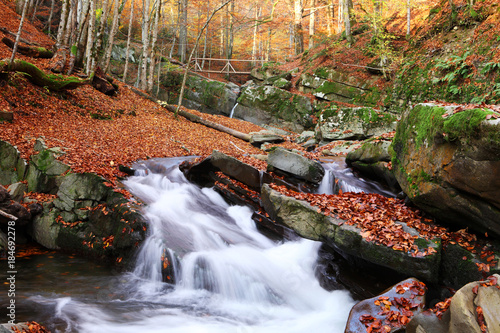 Tuinposter Herfst Waterfall in the autumn beech forest