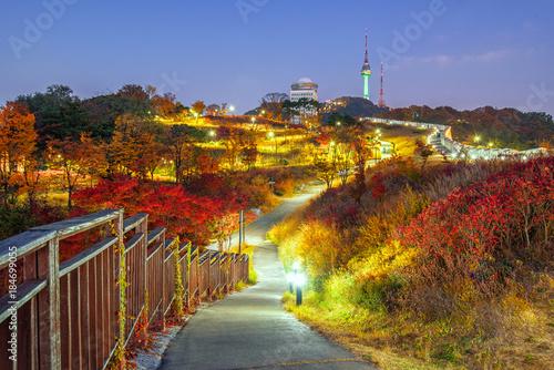 Plexiglas Seoel Namsan Park Autumn at night in Seoul,South Korea.