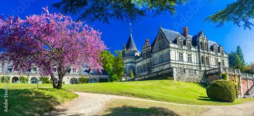 Fotobehang Freesurf Romantic beautiful castles of France- Chateau de la Bourdaisiere in Loire valley