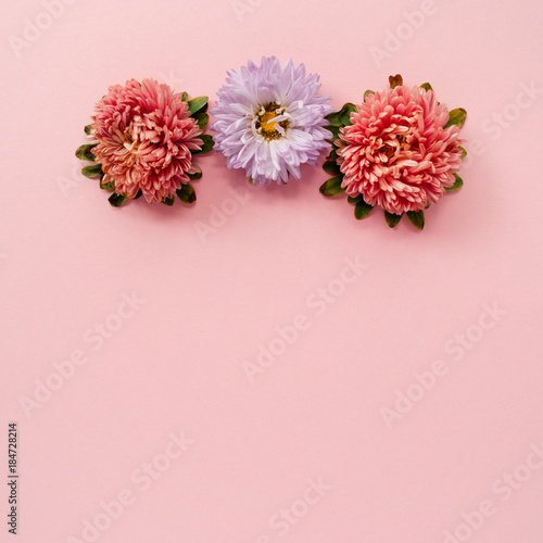 Floral frame made of pink and lilac aster flowers with space for text on a pink background. - 184728214