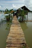 Maison birmane typique - 184730689