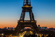 A spectacular dawn and the Eiffel tower background.