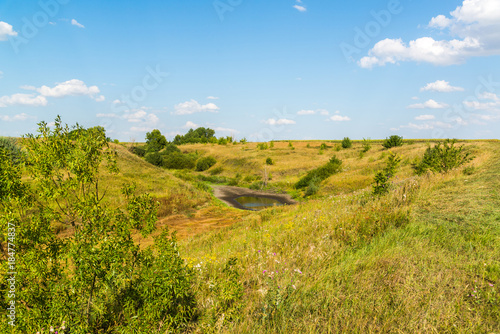 Fotobehang Honing Steppe landscape with drying pond