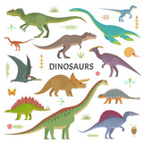 Vector collection of cute flat dinosaurs, including T-rex, Stegosaurus, Velociraptor, Pterodactyl, Brachiosaurus and Triceratop, isolated on white.