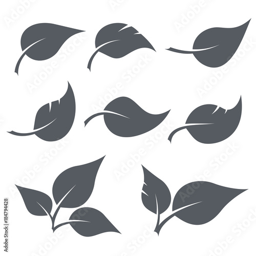 Black and white leaves shapes set - 184794428