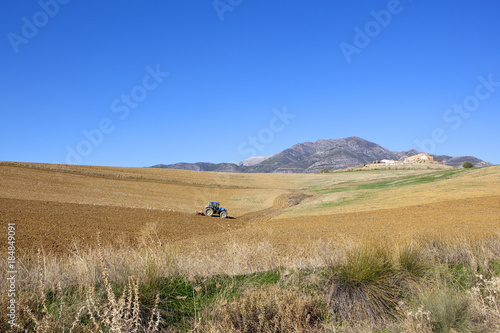 Foto op Canvas Natuur spanish agriculture