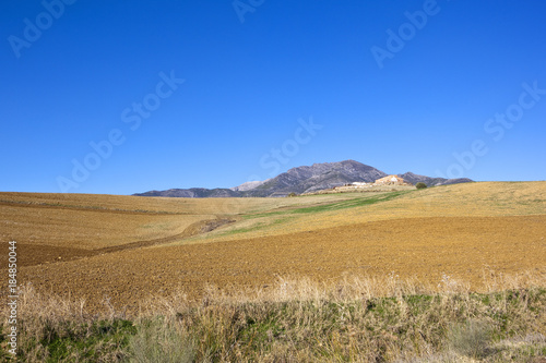 Foto op Canvas Natuur mountains and arable fields