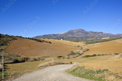 Foto op Canvas Natuur andalucian farming scenery