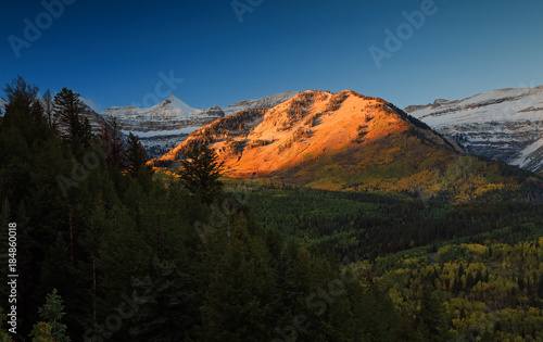 Fotobehang Nachtblauw Fall landscape in the Wasatch Mountains, Utah, USA.