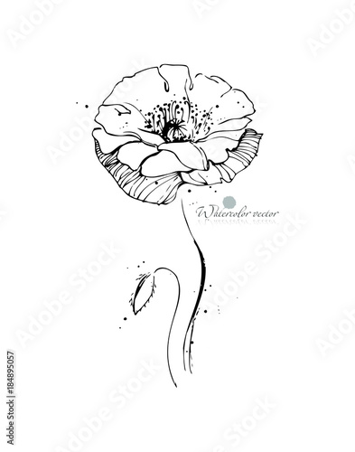 Black and white, watercolor, graphic flower