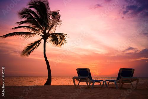 Palm trees silhouette at sunset tropical beach. Orange sunset.