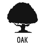 Oak tree icon. Simple illustration of oak tree vector icon for web
