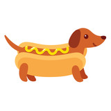 Hot dog dachshund puppy