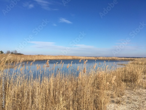 Chesapeake Bay in December