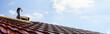 Dacheindeckung (Panoramabild)