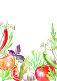 Pattern of a spices and herbs.Vegetables for canning.Picture of a pepper, garlic, tomato,rocket, bay leaf, cloves,allspice.Ingredients for cooking.Watercolor hand drawn illustration.White background. - 185020873