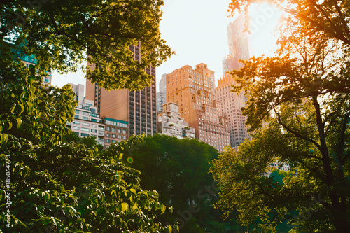 Sunrise in central park New York City , Manhattan