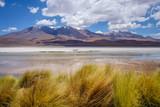 Laguna Honda in sud Lipez Altiplano reserva, Bolivia - 185111856