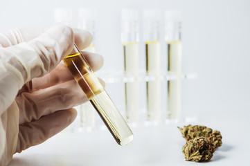 Medizinisches Cannabis Öl im Labor