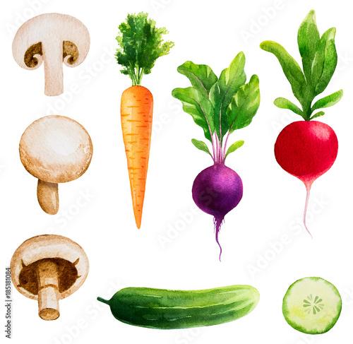 Watercolor vector vegetables set - 185181084