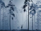 silhouette of the forest with a family of deer, vector illustration