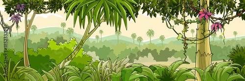 panorama cartoon green tropical forest with palm trees - 185233225