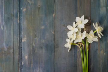 White daffodils and heart