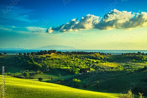 Deurstickers Toscane Maremma countryside, sunset landscape. Elba island on horizon. Tuscany, Italy.