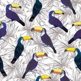 Seamless tropical pattern with Toucan. Vector summer background - 185330233