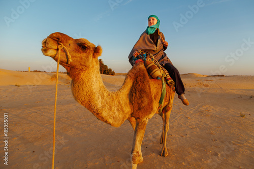 Fototapeta Woman riding a camel in the Sahara desert.