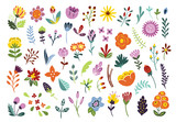 Color flowers and plants illustration set. Florals for graphic design