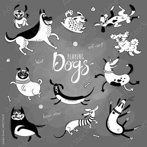 Playing dogs. Funny lap-dog, happy pug, mongrels and other breeds. Set of isolated vector drawings for design - 185370628