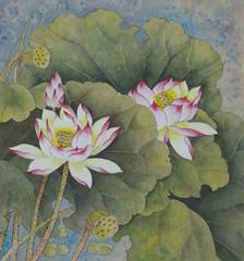 lotus symbol of purity