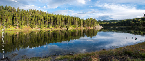 Water reflection at Yellowstone National Park