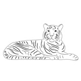 isolated sketch of a tiger lies