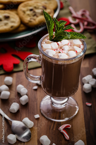 Foto op Plexiglas Chocolade Hot Chocolate with Bits of Candy Cane and Mini Marshmallows
