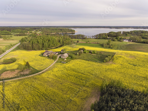 Fotobehang Honing Aerial view over yellow rape field in a rural farm, Lithuania, Europe. During cloudy summer day.