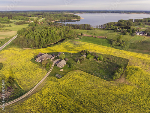 Papiers peints Miel Aerial view over yellow rape field in a rural farm, Lithuania, Europe. During cloudy summer day.