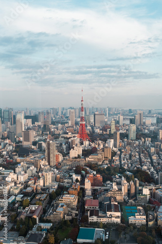 Fotobehang Tokio Tokyo tower with Tokyo city view.