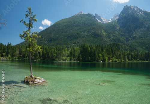 Fotobehang Olijf A short distance from Ramsae is the picturesque, not too large lake Hintersee, surrounded by mountain giants